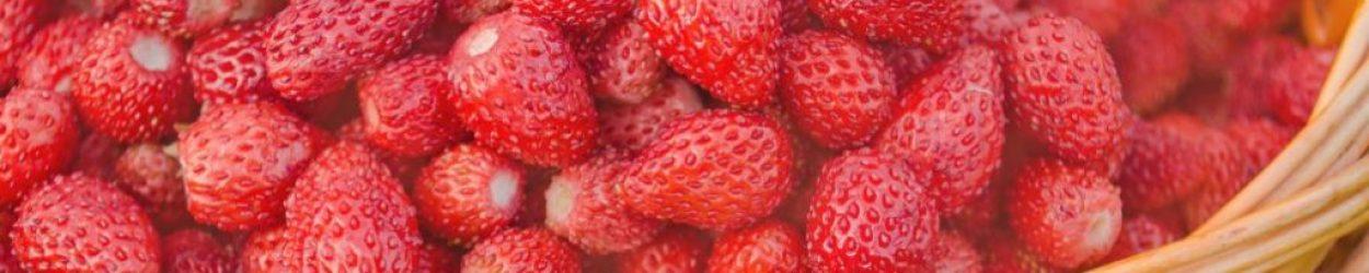 Nemi strawberries